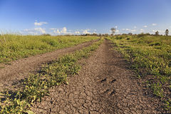 Campos áridos rurais da estrada de Moree Fotografia de Stock
