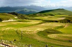 Campos agrícolas de Armenia Imágenes de archivo libres de regalías