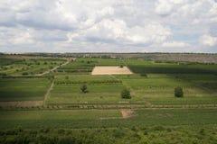 Campos agrícolas de la vista panorámica Foto de archivo