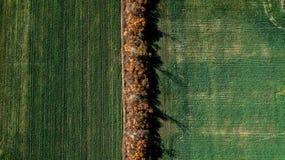 Campos agrícolas desde arriba Opinión del ojo del ` s del pájaro foto de archivo libre de regalías