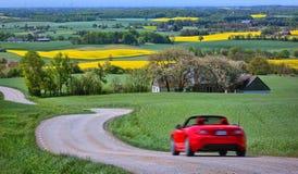 Campos amarillos de la rabina y un coche rojo Imagen de archivo libre de regalías