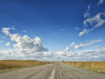 Campos amarillos debajo de un cielo azul dramático con las nubes blancas próximas la colonia del griego clásico de Histria, en la Imagen de archivo libre de regalías