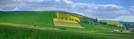 Campos amarillos en Baja Sajonia Imágenes de archivo libres de regalías