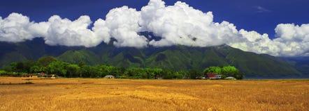 Campos após a colheita. Panorama. Imagens de Stock
