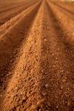 Campos arados de la agricultura del suelo de arcilla roja Fotos de archivo