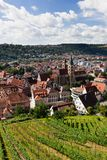 Campos bonitos da cidade e do vinho do geman foto de stock