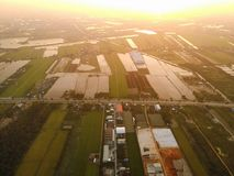 Campos bonitos do arroz da opinião do por do sol em Tailândia da vista aérea imagem de stock royalty free