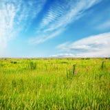 Campos bonitos do céu e do verão imagens de stock royalty free
