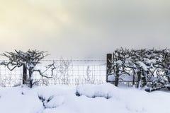 Campos britânicos do campo no blizzard foto de stock royalty free
