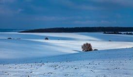 Campos cobertos de neve fotografia de stock