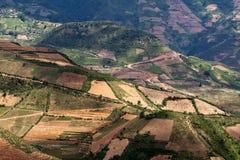 Campos colgantes del arroz en MU Cang Chai Imagen de archivo libre de regalías