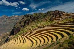 Campos colgantes en el área arqueológica del inca de Pisac en el valle sagrado cerca del Cusco imagen de archivo