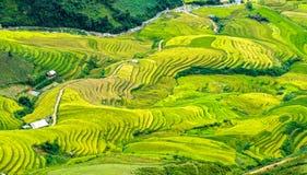 Campos colgantes que estiran abajo del valle Imagen de archivo