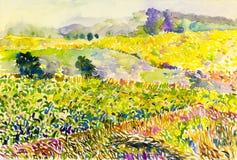 Campos coloridos del paisaje original de flores en montaña Foto de archivo