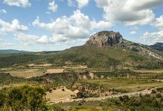 Campos com montanha Foto de Stock