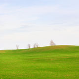 Campos com nuvens Fotografia de Stock