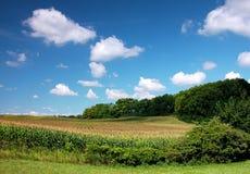 Campos com nuvens Imagem de Stock Royalty Free