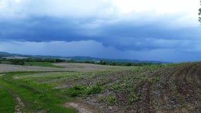 Campos com nuvens escuras Imagens de Stock