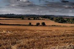Campos comuns de Oughtonhead Fotografia de Stock