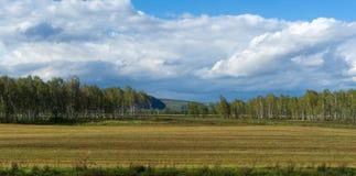 Campos cosechados de Khakassia Imagenes de archivo