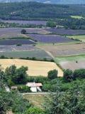 Campos da alfazema para petróleos essenciais fotos de stock royalty free