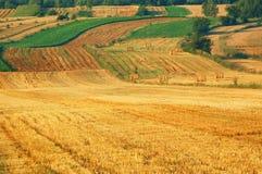Campos da faixa no Polônia do leste Imagens de Stock Royalty Free
