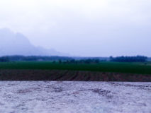 Campos de almofada próximo pelo montain Imagens de Stock