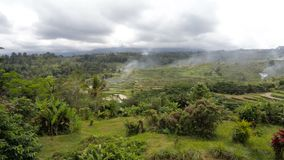 Campos de arroz colgantes del arroz en Bali central, Indonesia almacen de metraje de vídeo