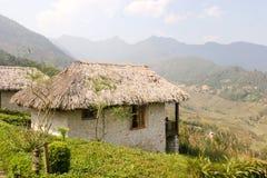 Campos de arroz del centro turístico y de arroz Fotografía de archivo libre de regalías