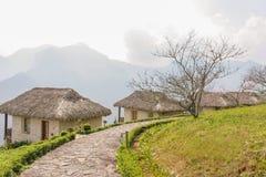 Campos de arroz del centro turístico y de arroz Imagenes de archivo