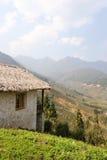 Campos de arroz del centro turístico y de arroz Foto de archivo libre de regalías