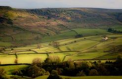 Campos de Burnsall, vales de Yorkshire fotos de stock