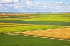 Campos de Castilla na mola Foto de Stock