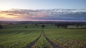 Campos de cultivo británicos en el lapso de tiempo de primavera metrajes