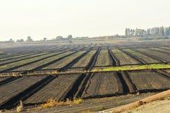 Campos de establecimiento agrícolas Fotos de archivo libres de regalías