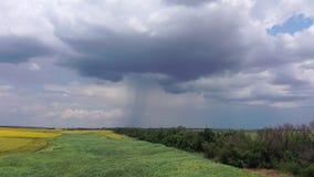 Campos de exploração agrícola contra um céu nebuloso Você pode ver como chove da nuvem vídeos de arquivo
