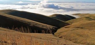 Campos de exploração agrícola dourados do rolamento com nuvens grossas imagens de stock