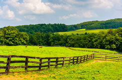 Campos de exploração agrícola e Rolling Hills no Condado de York rural, Pensilvânia fotografia de stock