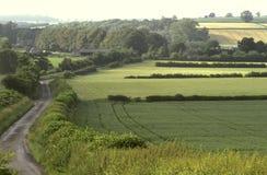 Campos de exploração agrícola ingleses imagem de stock