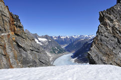 Campos de gelo de Juneau Imagem de Stock Royalty Free