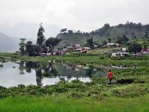 Campos de grama do lago Fotografia de Stock