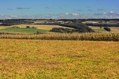 Campos de granja Fotos de archivo libres de regalías