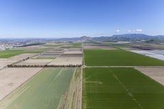 Campos de granja del verde de la primavera de Camarillo California Imagen de archivo libre de regalías