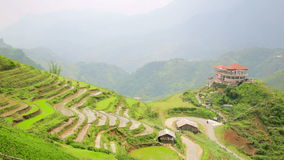 campos de granja magníficos, terrazas del arroz de arroz, Sapa, Vietnam almacen de video