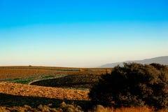 Campos de granja vacíos en el paisaje de Rolling Hills Foto de archivo libre de regalías