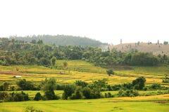 Campos de la choza y del arroz en Tailandia Fotografía de archivo libre de regalías