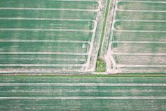 Campos de la cosecha Fotografía de archivo libre de regalías