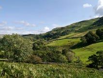 Campos de la ladera cerca de Glenridding, distrito del lago Fotografía de archivo libre de regalías