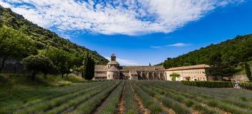 Campos de la lavanda, Provence, Francia Foto de archivo libre de regalías