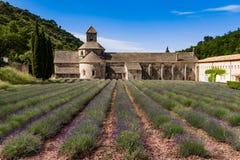 Campos de la lavanda, Provence, Francia Imagenes de archivo